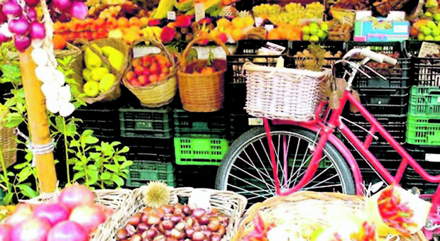 Alzheimer, la frutta diminuisce l'accumulo di proteine nocive