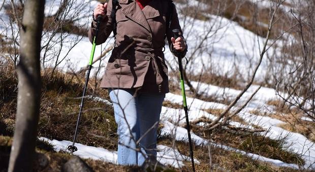 Escursionisti sorpresi dalla neve durante la gita: ragazza in ipotermia e il suo cagnolino morto dal freddo (Foto di Paolo Ghedini da Pixabay)