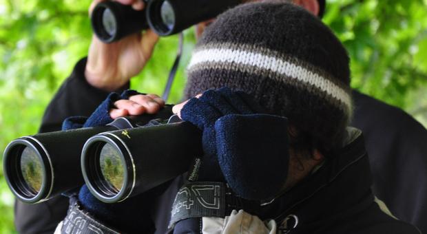Coppia di escursionisti si perde nel bosco a Subiaco: ritrovati dopo un'ora di ricerche