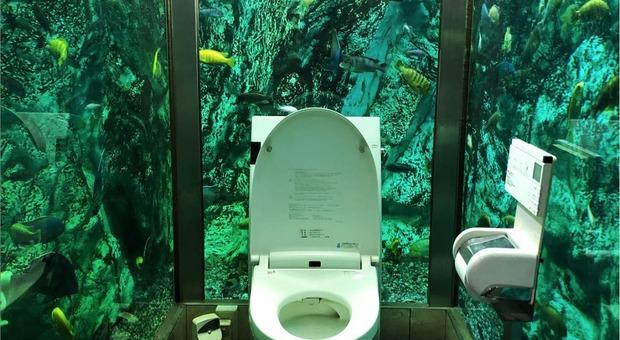 """La toilette dell'""""Hipopo Papa Cafe"""" di Akashi (foto del profilo Instagram yuri.kiwi)"""