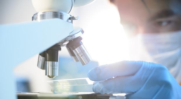 Tumore ovaio, scoperto meccanismo-chiave per la crescita: studio italiano apre strada a nuove terapie