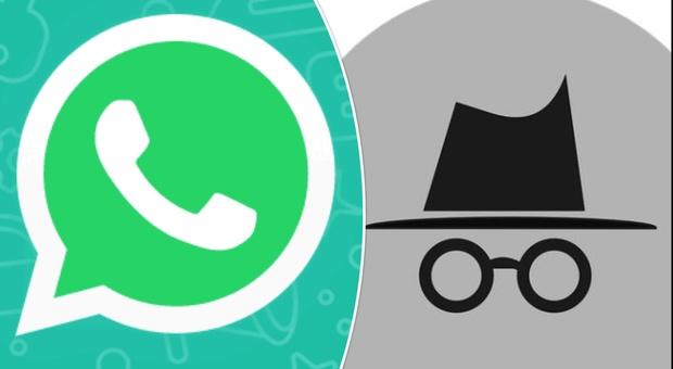 WhatsApp, ecco i trucchi per usare l'app in incognito e non farsi scoprire dai nostri contatti