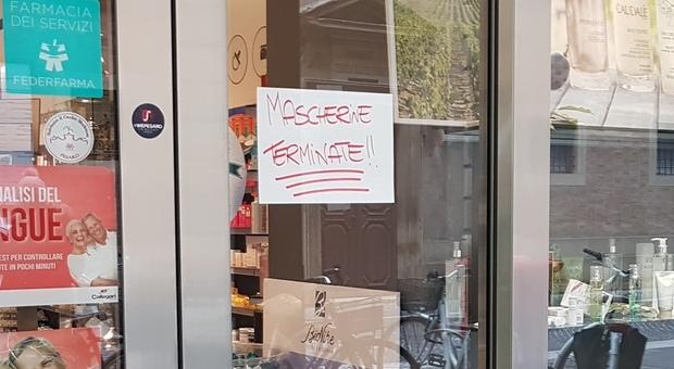 Pesaro, farmacie comunali senza mascherine: «Un carico fermo alla dogana di Genova»