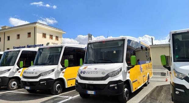 I nuovi bus della Cialone Tour
