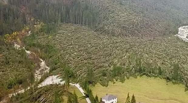 Così il terribile vento di ottobre aveva ridotto la Val Visdende
