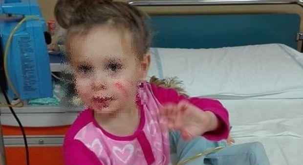 Ginevra, 7 anni, ha un tumore al cervello: «Aiutateci a portarla in Germania». Già raccolti 20mila euro grazie ai social