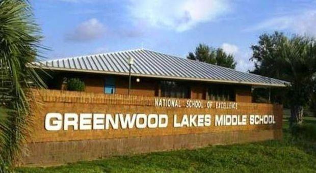 Quattordicenne si suicida nel bagno della scuola da anni - Nel bagno della scuola ...