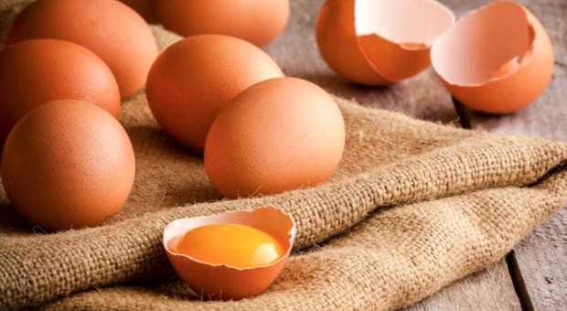 Uova, legame con infarto e ictus. «Mangiarne più di una al giorno aumenta i rischi»