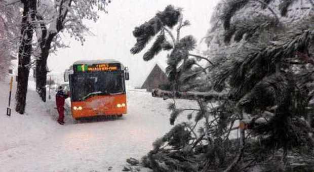 La forte nevicata nel Cadore