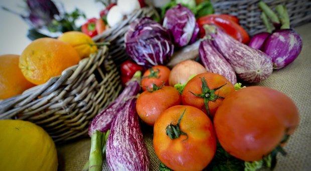 dieta per perdere peso a longo prazor