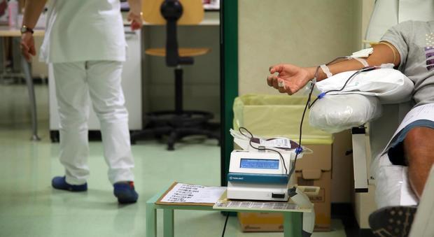 Chikunguya, solidarietà dalle Regioni: già disponibili 849 sacche di sangue
