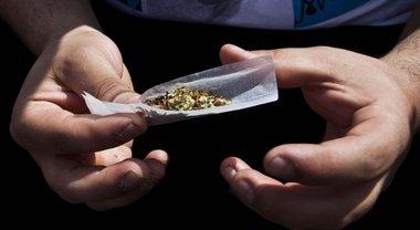 Cannabis, anche un solo spinello modifica il cervello di un adolescente