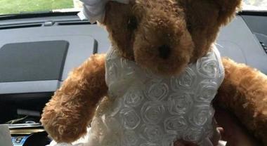 Rubano il peluche con le ceneri della figlia morta: mamma disperata lancia appello su Facebook