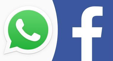 WhatsApp, privacy a rischio: «Facebook potrà leggere tutti i messaggi degli utenti»