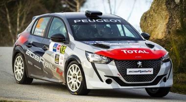 Peugeot, un 2020 all'insegna dei rally: dai trofei Competition al ritorno di Andreucci