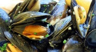 Cozze dalla Spagna contaminate con un batterio pericoloso, allarme in tutti i mercati e supermercati in Italia