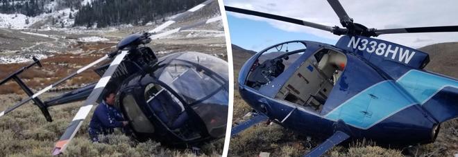 L'alce che abbatte un elicottero: le foto incredibili