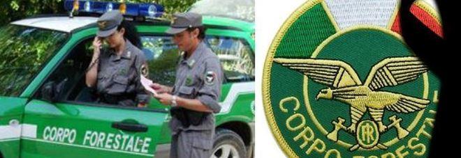 Caos Forestale, in 7 mila diventano carabinieri: valanga di ricorsi