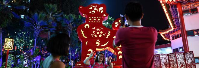 Capodanno cinese il 16 febbraio, inizia l'anno del Cane. Festa anche in Italia