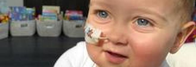 Alex, corsa contro il tempo per salvare il bimbo: sarà trasferito da Londra al Bambino Gesù