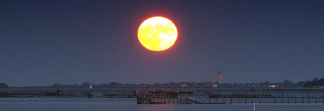 Dalla Superluna alle stelle cadenti, nei prossimi giorni tutti con il naso all'insù