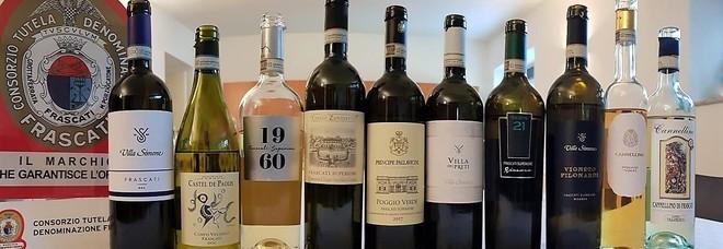 """Frascati, ecco il """"palcoscenico"""" per i vini del territorio: eventi e degustazioni nel weekend"""