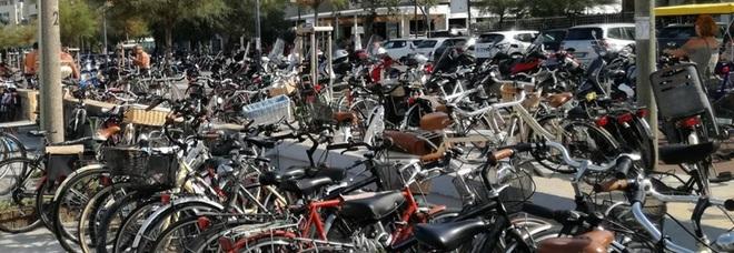 Pesaro, impennata dei furti di biciclette: ladri a caccia di quelle elettriche
