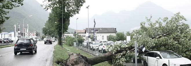 Pericolo temporali: zone montane a rischio fino a domenica