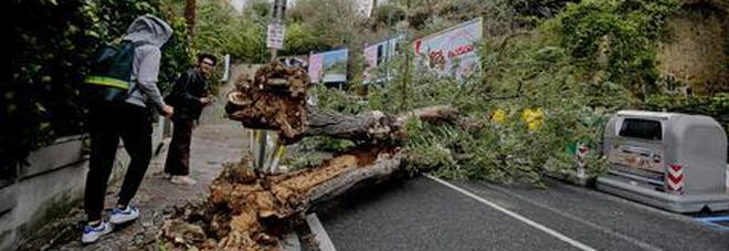 Lunedì 5, ancora chiuse le scuole Viviani e Cimarosa a Posillipo