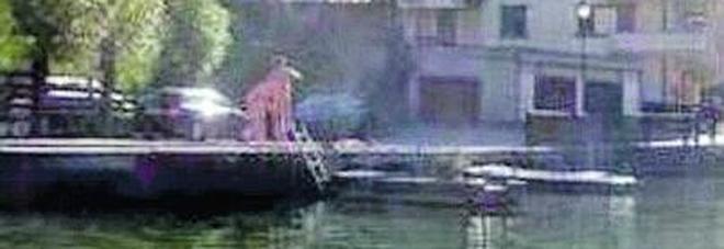 Alleghe, lui e lei nudi nel lago tra cigni e anatroccoli /La foto