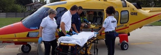 Colpito alla testa da ramo di 100 chili  mentre potano: operaio in rianimazione