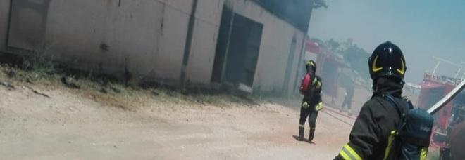 Furioso incendio devasta un allevamento: è strage di bovini
