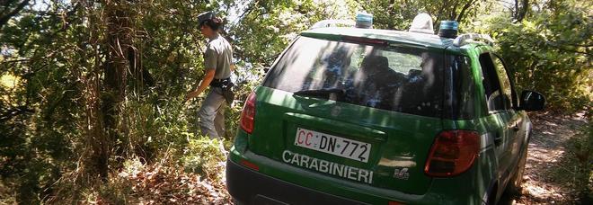 Pensano di sparare ai lupi ma sono carabinieri: due fratelli denunciati