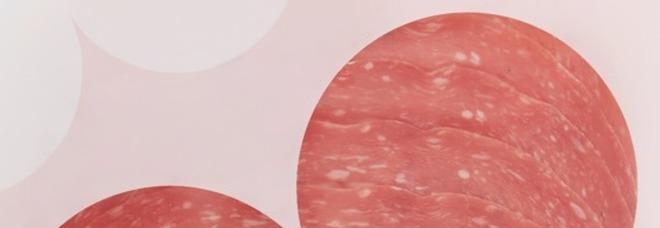 Conad, rischio salmonella: salame Golfetta ritirato dal mercato. Il lotto interessato