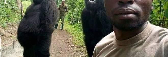 L'incredibile autosocatto di Mathieu Shamavu del Virunga National Park