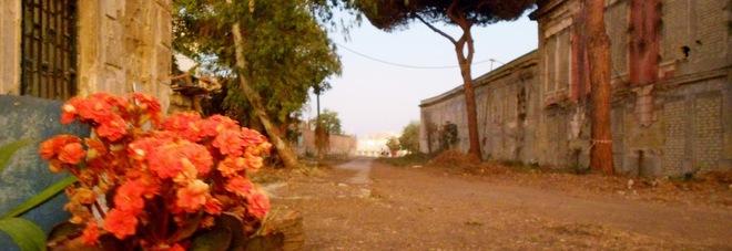 L'area delle Monachelle ripulita