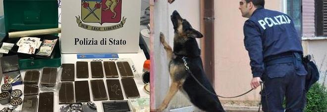 Poliziotti e cane antidroga gli trovano in casa 2 chili di hashish: arrestato