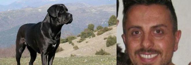 Sbranato a morte dal cane, un testimone: «Forse non è il suo ad averlo aggredito»