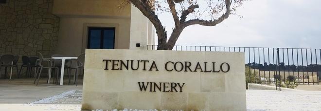 Tenuta Corallo Winery: il sogno di una cantina sul mare del Salento.