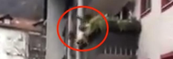 Litiga con un uomo in strada e per la foga cade dal balcone: il video è virale