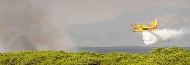 Ostia, fiamme nella pineta di Procoio