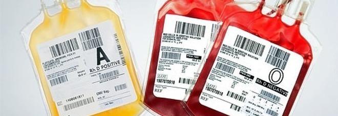 Testimone di Geova morta dissanguata in ospedale: ha rifiutato la trasfusione. La famiglia: «Una grande, ha dato una lezione ai medici»