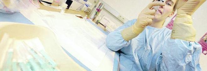 Malattia di Lyme, è allarme: centinaia di casi, colpisce cervello e articolazioni