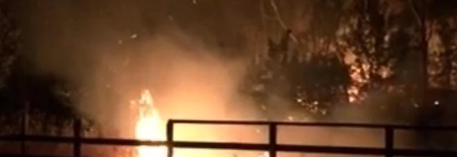 Eboli- Incendio in pineta