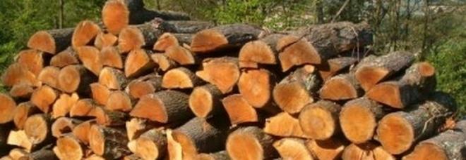 Acquistano 45 quintali di legna da ardere su internet: arriva il camion con una pessima sorpresa