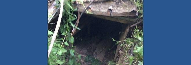 Il covo nascosto dalla vegetazione