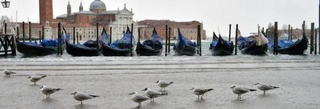 Unesco avverte Venezia: «Risolva  i problemi o non sarà Patrimonio»