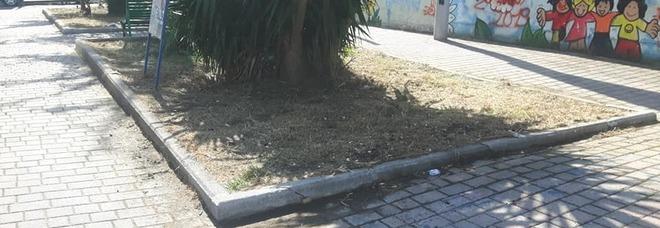 Soccavo, dopo la segnalazione al Mattino.it ripuliti i giardinetti di via Epomeo