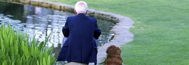 Cuore degli over 65, avere un cane è un toccasana