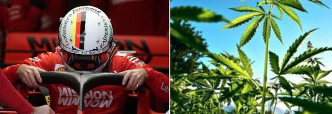 Vettel choc al Gp di Austin: «Odore di marijuana sul circuito, è una follia!»